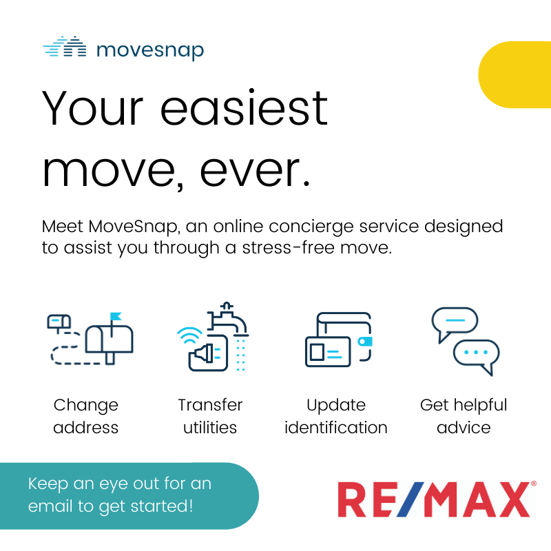Click the image to get a brochure about MoveSnap